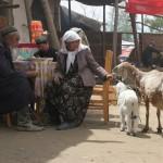 28232_401161579245_770485_n-150x150 Uygur kültür ve sosyal yaşam