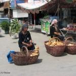 30932_394210734245_3605824_n-150x150 Uygur kültür ve sosyal yaşam
