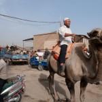 34904_414077899245_8164606_n-150x150 Uygur kültür ve sosyal yaşam