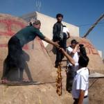 35661_404467794245_2490410_n-150x150 Uygur kültür ve sosyal yaşam