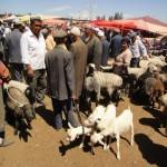 38543_416157499245_1652243_n-150x150 Uygur kültür ve sosyal yaşam