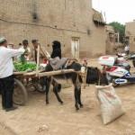 47172_427050889245_4475133_n-150x150 Uygur kültür ve sosyal yaşam