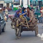 61244_438650794245_5608719_n-150x150 Uygur kültür ve sosyal yaşam