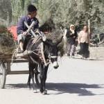 69449_450077084245_2762582_n-150x150 Uygur kültür ve sosyal yaşam