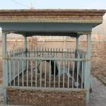 10766_10152562718233942_1697325378_n-150x150 Doğu Türkistan Uygur Türkleri Şubat 2014