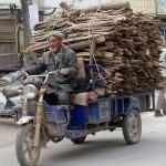 1546369_205768176293470_533739377_n-150x150 Doğu Türkistan Uygur Türkleri Şubat 2014
