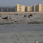 1546462_10152557865483942_791701254_n-1-150x150 Doğu Türkistan Uygur Türkleri Şubat 2014