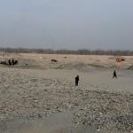 1555412_10152557873088942_1532654491_n-150x150 Doğu Türkistan Uygur Türkleri Şubat 2014