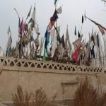 1604463_10152552997638942_1609290121_n-150x150 Doğu Türkistan Uygur Türkleri Şubat 2014