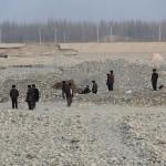1620911_10152557873363942_947672570_n-150x150 Doğu Türkistan Uygur Türkleri Şubat 2014