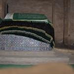 1656118_10152562772278942_773548925_n-150x150 Doğu Türkistan Uygur Türkleri Şubat 2014