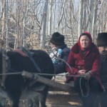 1780619_10152553047178942_773757914_n-150x150 Doğu Türkistan Uygur Türkleri Şubat 2014