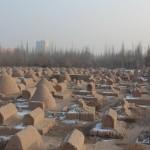 1781923_10152562823723942_1960080697_n-1-150x150 Doğu Türkistan Uygur Türkleri Şubat 2014