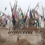 1781965_10152552998788942_1424044451_n-150x150 Doğu Türkistan Uygur Türkleri Şubat 2014