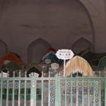 1797496_10152562722798942_650483135_n-150x150 Doğu Türkistan Uygur Türkleri Şubat 2014