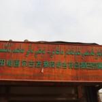 1798635_10152557833708942_468490772_n-150x150 Doğu Türkistan Uygur Türkleri Şubat 2014