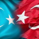 18197_10151554871383942_970118511_n-150x150 Doğu Türkistan Uygur Türkleri Şubat 2014