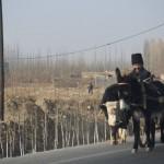 67844_10152553047303942_1295623005_n-150x150 Doğu Türkistan Uygur Türkleri Şubat 2014